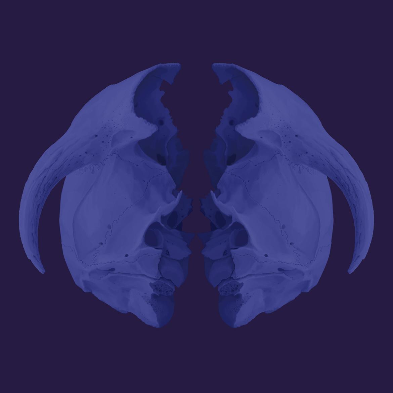 Jules Julien - The Blue Series - POCKO